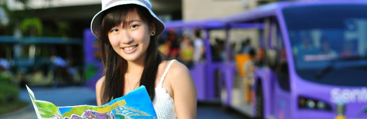 Qui sont les touristes chinois en France ?